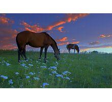Unforgettable Summer Photographic Print