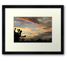 Cima Dome After Storm, Mojave National Preserve, California Framed Print