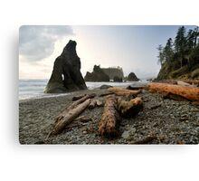 Sea Stacks off Ruby Beach - Olympic N. P. Canvas Print