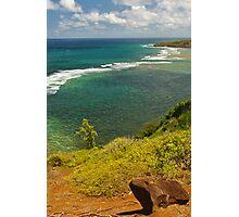 Kau'ai Ocean View Photographic Print