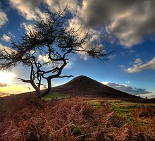 Roseberry Topping by szysza