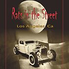 Rats in the Street - version II by Carlos Solorza