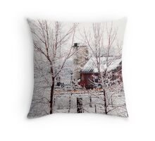 Frigid Scene Throw Pillow