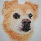 The plumber's dog. by Gary Fernandez