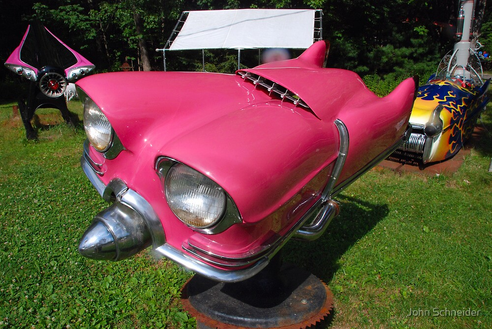 """""""Little Pink"""" by John Schneider"""