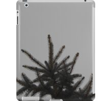 Desolate Winter  iPad Case/Skin