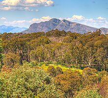 Love  Her Far Horizons - Mount Stirling, Victoria Australia - The HDR Experience by Philip Johnson