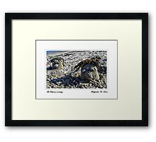 The Feldmans on holiday....  Framed Print
