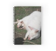 Wallaby family Spiral Notebook
