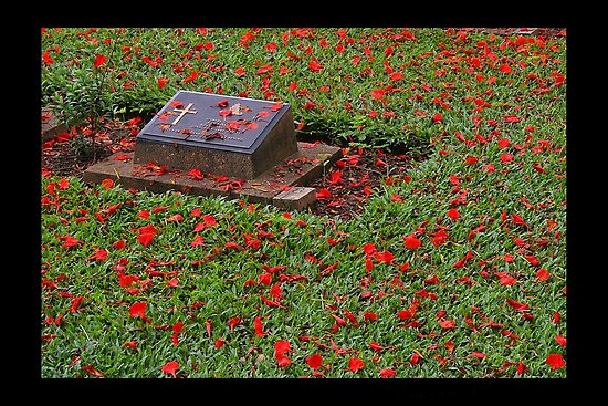 Lest we forget . . . .  by John Dalkin