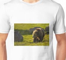 Grizzly Bear-Signed   #4545 Unisex T-Shirt