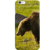 Grizzly Bear-Signed-#4535 iPhone Case/Skin