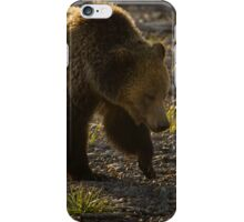 Grizzly Bear-Signed-#4435 iPhone Case/Skin