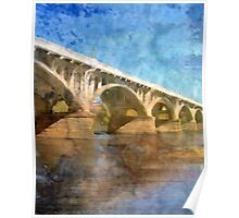 Spanning the Congaree Poster