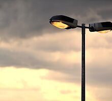Lights by Lea Valley Photographic