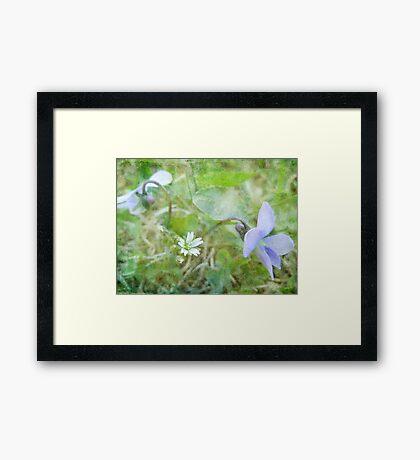 Miniatures Framed Print
