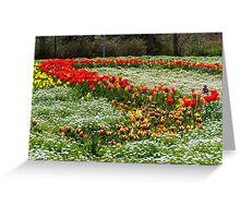 Tulips as a hair fashion Greeting Card
