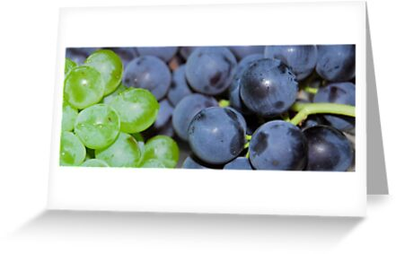 Grapes by vbk70