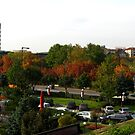 Autumn in the city by Maria1606