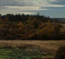 Autumn scenery (Autumn 2010) by Antanas