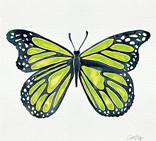 Lime Butterfly by Cat Coquillette