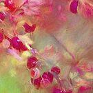 Summer Berries by jules572