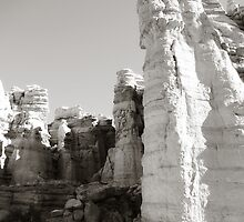 Plaza Blanca Cliffs Vertical - El Rito, NM by Lisa Blair