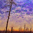 Northern Survivor by Randall Talbot