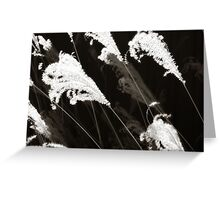 Grass Swaying in the Wind - La Cienega, NM Greeting Card