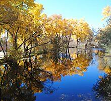 Autumn Pond Reflection - La Cienega, NM by Lisa Blair