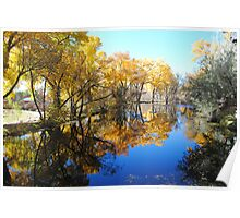 Autumn Pond Reflection - La Cienega, NM Poster