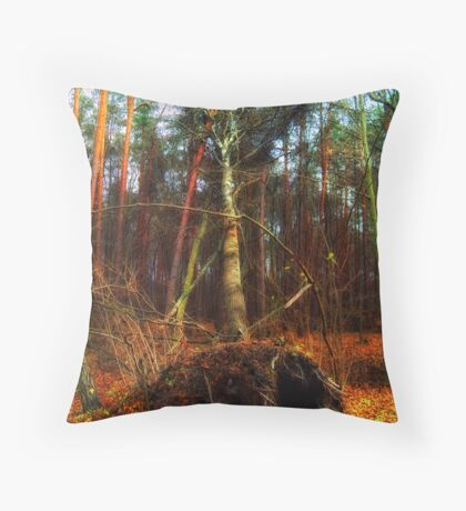 Demonstration, of power Throw Pillow