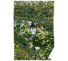 Lamp and Turning Leaves Poster