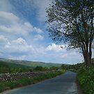 The Road to Gunnerside by WatscapePhoto