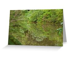 Reflections on Byrrill Creek. Greeting Card