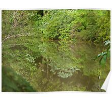 Reflections on Byrrill Creek. Poster