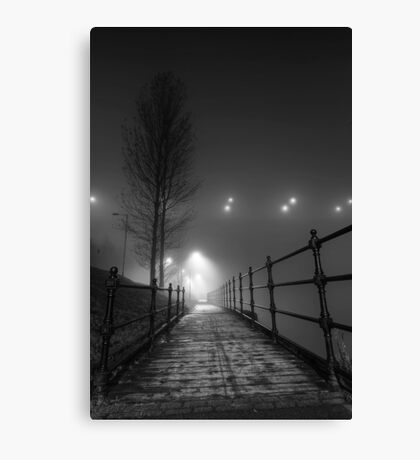 Lonely pathway Canvas Print