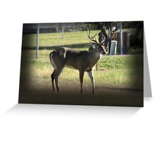 8 Point Greeting Card