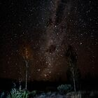 Path to the milky Way by Andrew Wilson