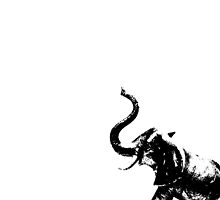 Elephancy by nigelcameron