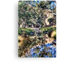 Marne reflections Canvas Print