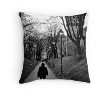 OnePhotoPerDay Series: 316 by C. Throw Pillow