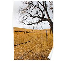 Tree & Fence Poster