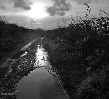 No Through Road - Flooded Lane - County Antrim, Northern Ireland. by Laura Butler