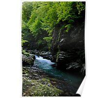 Vintger gorge, Slovenia Poster