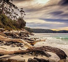 Fortescue Bay by Paul Amyes