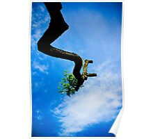 Reaching the sky Poster
