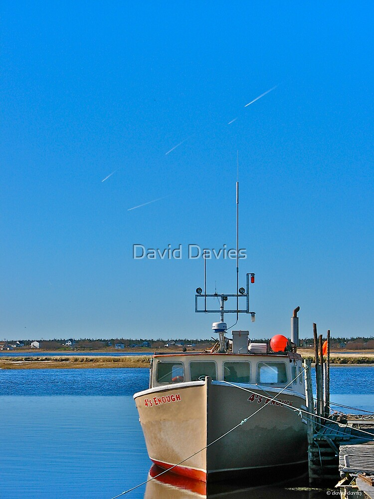 Cape Sable Island, By Sea and By Air by David Davies