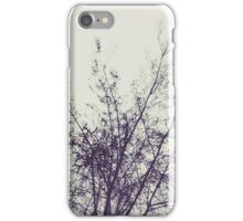 winter tree branches iPhone Case/Skin