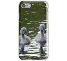 Fluffy Cygnets on the lake iPhone Case/Skin